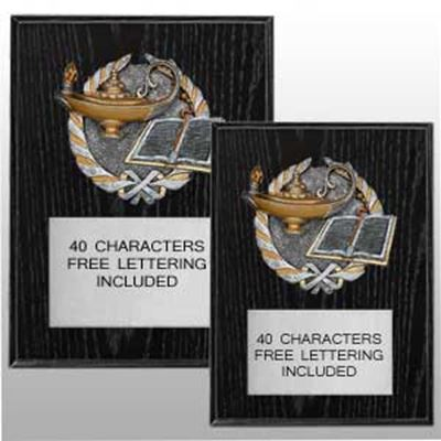 Picture of Resin Relief Activity / Sport Plaques