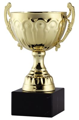 Picture of AMC2 Series Open Cup Trophies