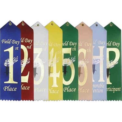 """Picture of Stock 2""""x8"""" Field Day Ribbons w/ Card"""