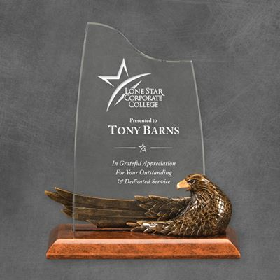 Picture of Bronze Resin & Acrylic Eagle