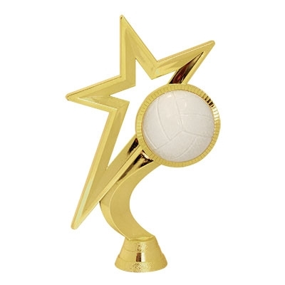 Gold Star - Volleyball [+$0.50]